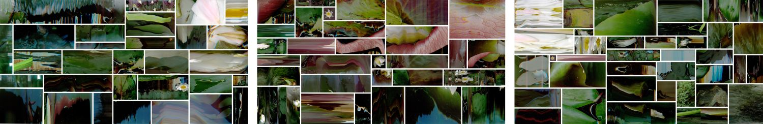 Click the image for a view of: Giverny of the Midwest installation. 2011. Archival digital prints. Edition 3. 2 X 12m